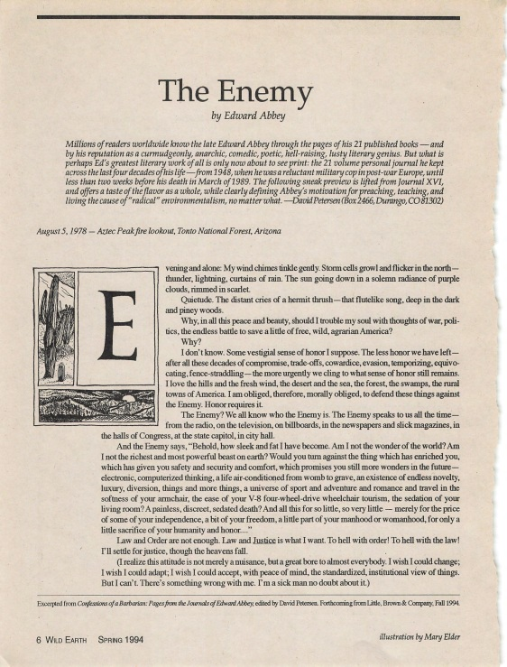Edward Abbey - The Enemy